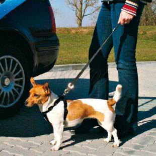Bezpečnostné vodidlo pre psa do auta, 40 - 60 cm