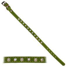Obojok pre psa s ozdobami, zelený - 1x22-26cm