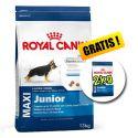 ROYAL CANIN MAXI JUNIOR 13 + 2 kg GRÁTIS