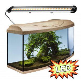 Akvárium STARTUP 80 LED Extra 2x10,1W - OBLÚK - BUK