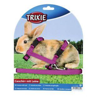 Postroj a vodítko pre zajace - plastové zapínanie, fialová