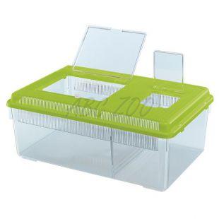 Prepravka pre plazy a hmyz GEO FLAT LARGE - zelená, 8L