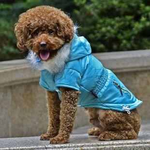 Bunda pre psa s imitáciou vreciek na zips - modrá, XL