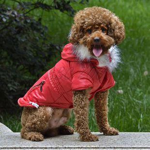 Bunda pre psa s imitáciou vreciek na zips - červená, XL