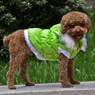 Bunda pre psa s odopínateľnou kapucňou - zelená, L