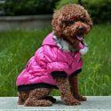 Bunda pre psa s čiernym lemovaním- ružová, XL