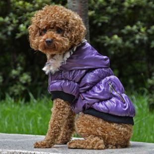 Bunda pre psa s čiernym lemovaním - fialová, L