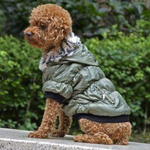 Bunda pre psa s čiernym lemovaním - zelená, M