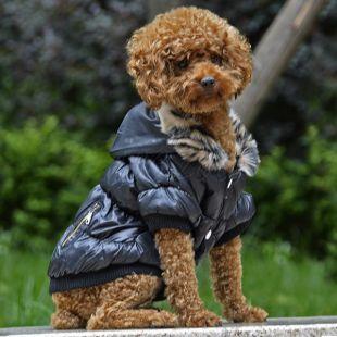 Bunda pre psa s čiernym lemovaním - čierna, XL