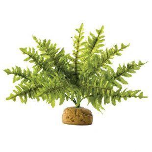 Exo Terra rastlina do terária - Boston Fern Small, 20cm