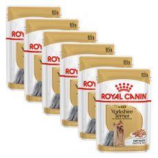 ROYAL CANIN Yorkshire Loaf kapsička s paštikou pre jorkšíra 6 x 85 g