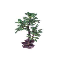 Dekoratívna umelá rastlina do akvária AP-611  - 18 x 10 cm