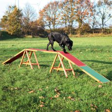 Agility prekážka pre psy, kladina Dog Activity 456 x 64 x 30cm