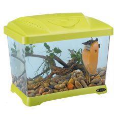 Plastové akvárium CAPRI JUNIOR GREEN 21L