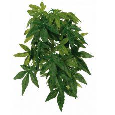 Rastlina do terária Abutilon - závesná 20 x 30 cm
