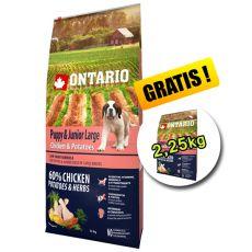 ONTARIO Puppy & Junior Large chicken & potatoes 12kg + 2,25kg GRATIS