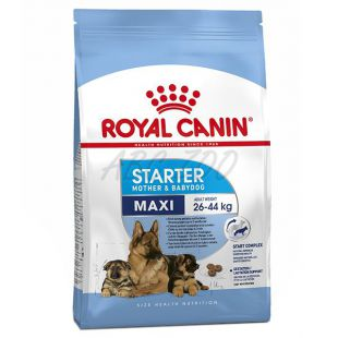 ROYAL CANIN MAXI STARTER MOTHER AND BABY DOG 15 kg