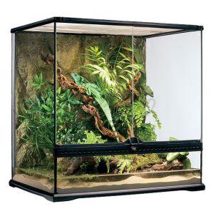 Terárium s pozadím vyrobené zo skla 60 x 45 x 60 cm
