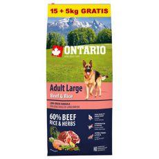 ONTARIO Adult Large Beef & Rice 15+5kg ZDARMA