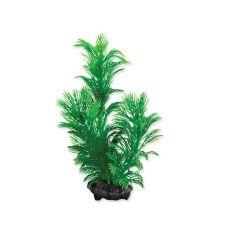 Tetra akvarijná rastlina - Green Cabomba S, 15cm