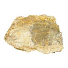 Kameň do akvária Petrified Stone M 21 x 7 x 13 cm