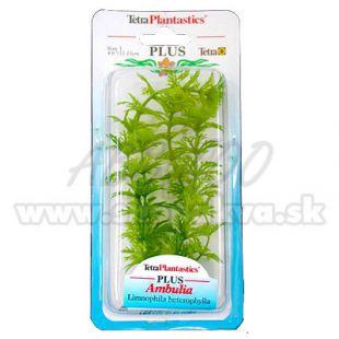 Limnophila sessiliflora ( Ambulia) - rastlina Tetra 15 cm