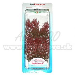 Myriophyllum heterophyllum (Red Foxtail) - rastlina Tetra 23 cm, M