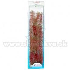 Myriophyllum heterophyllum (Red Foxtail) - rastlina Tetra 38 cm, XL