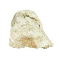 Kameň do akvária Grey Luohan Stone M 9 x 6 x 7 cm