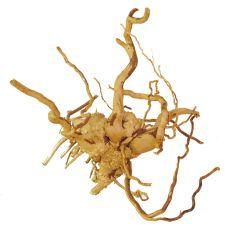 Koreň do akvária Cuckoo Root - 24 x 20 x 20 cm