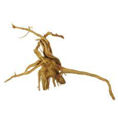 Koreň do akvária Cuckoo Root - 35 x 11 x 21 cm