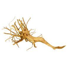 Koreň do akvária Cuckoo Root - 31 x 16 x 9 cm