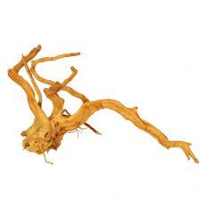 Koreň do akvária Cuckoo Root - 46 x 26 x 23 cm
