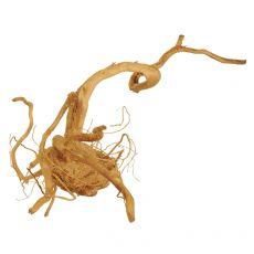 Koreň do akvária Cuckoo Root - 38 x 20 x 17 cm