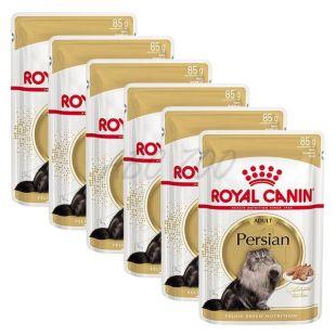 Royal Canin Persian Adult Loaf kapsička s paštétou pre perzské mačky 6 x 85 g