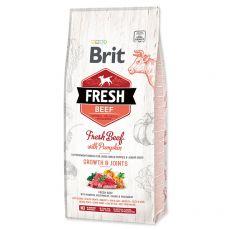 Brit Fresh Beef with Pumpkin Puppy Large 12 kg