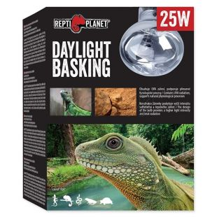 Žiarovka REPTI PLANET Daylight Basking Spot 25W