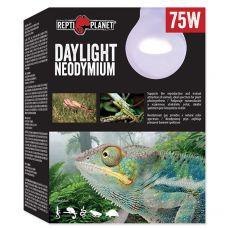 Žiarovka REPTI PLANET Daylight Neodymium 75W