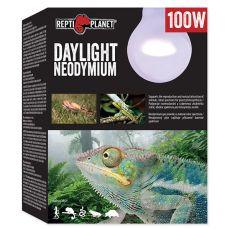 Žiarovka REPTI PLANET Daylight Neodymium 100W