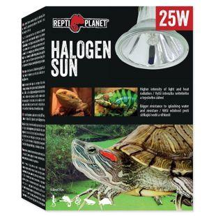 Žiarovka REPTI PLANET Halogen Sun 25W