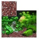 Aquatic Nature DEKOLINE INCA RED - 5kg