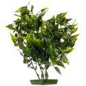 Plastová rastlinka do akvária 28 cm, srdcové listy