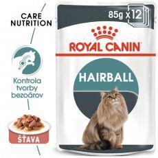 Royal Canin Hairball Care Gravy kapsička pre mačky v šťave 12 x 85 g