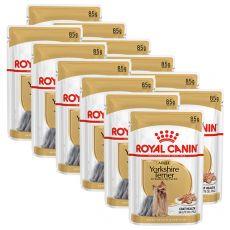 ROYAL CANIN Yorkshire Loaf kapsička s paštikou pre jorkšíra 12 x 85 g