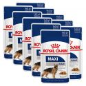Royal Canin Maxi Adult kapsička pre dospelé veľké psy 10 x 140 g