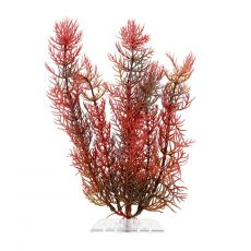 Plastová rastlina Tetra Red Foxtail, S 15 cm