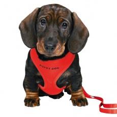 Postroj a vodítko pre šteňa - červený