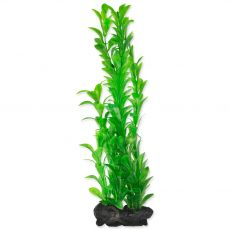 TETRA Rastlina Hygrophila L 30 cm