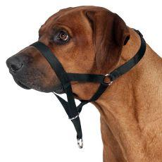 Postroj pre psov na tréning - ohlávka L, 31 cm