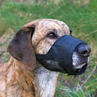 Náhubok pre psov - vetracia sieťka, veľkosť 2